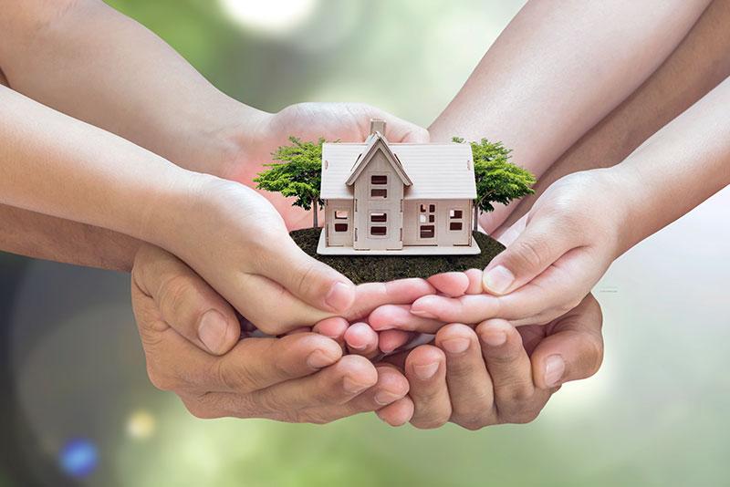 estate-planning cohen